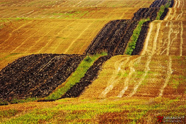 От Равда до Русе или шарената черга на дунавската равнина